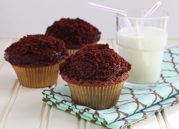 Chocolate Pudding Cupcakes with Chocolate Pudding Frosting! Black out cupcakes with chocolate cake crumbs on top!