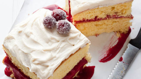 Two squares of cranberry vanilla cake.