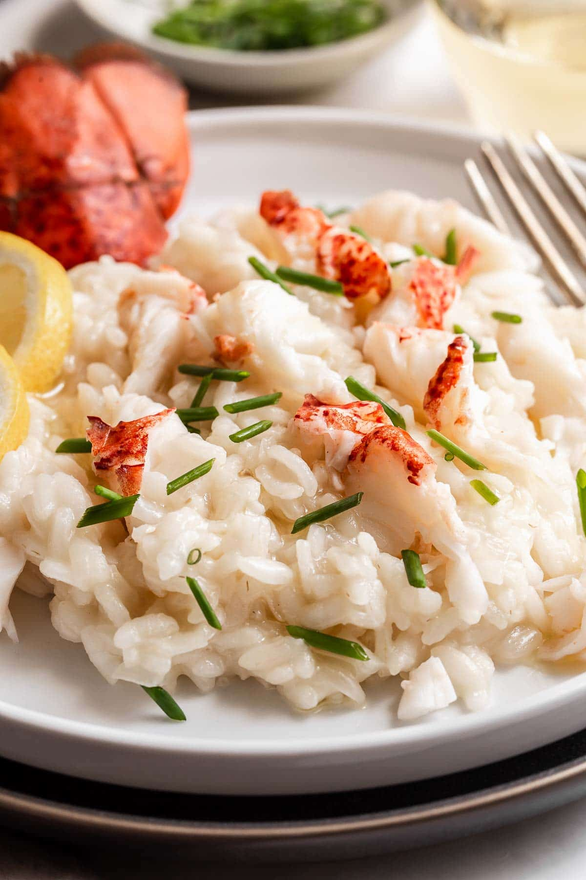 Close up of lobster risotto on a plate.
