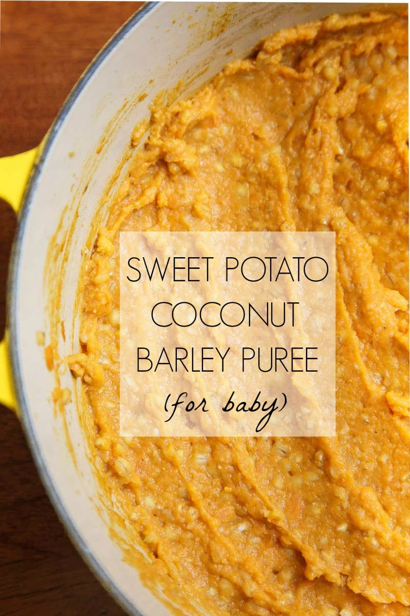 Homemade baby food: sweet potato barley and coconut milk