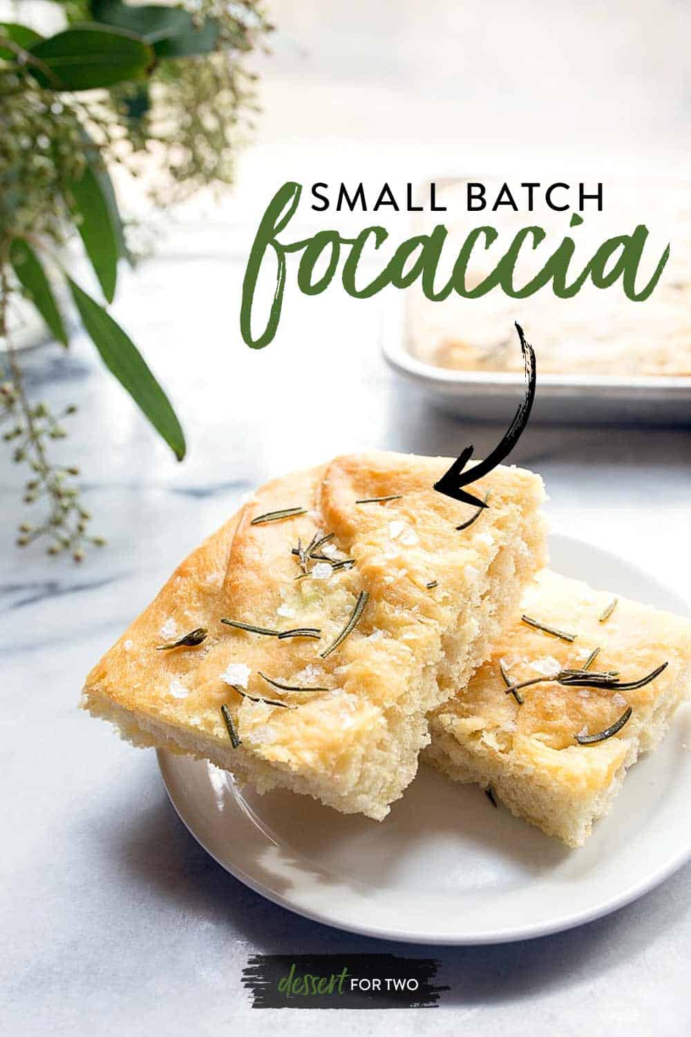 Rosemary focaccia bread! How to make a small batch of focaccia in a quarter sheet pan. Easy focaccia recipe in just 2 hours.