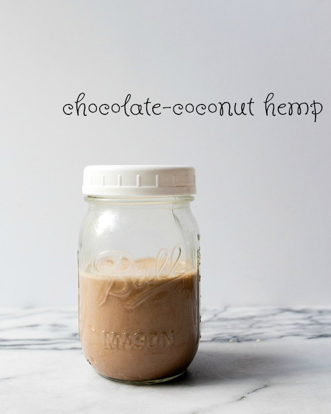 Chocolate Coconut Hemp Protein Smoothie for Kids