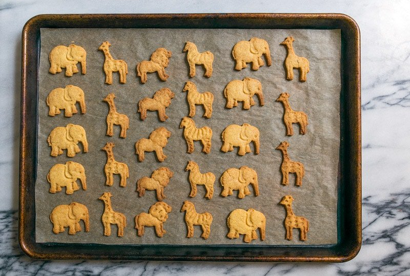 Homemade Animal Crackers Cookies Recipe for Kids