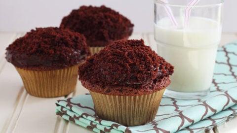 Chocolate Pudding Cupcakes