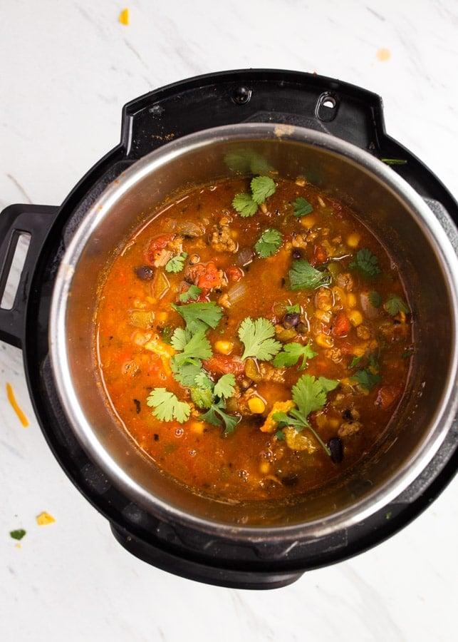 instant pot mini recipes