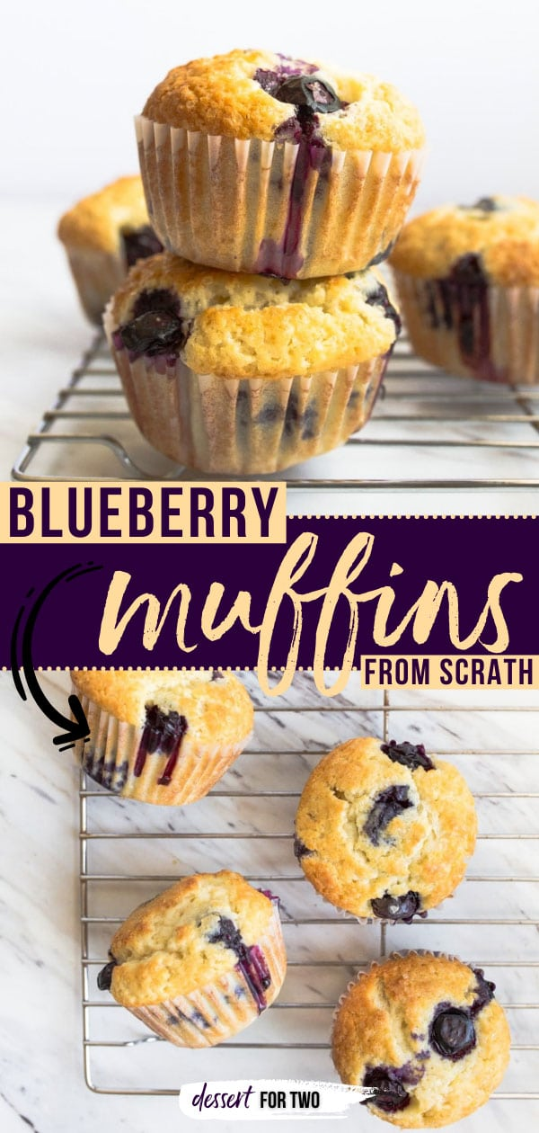 Small batch blueberry muffins for two.
